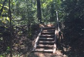 Andrew Jackson State Park Trail
