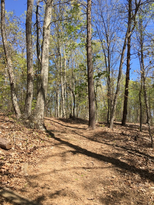 Bakers Mountain Park Trail