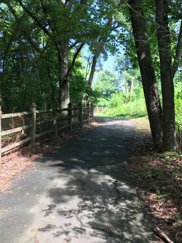 Blythe Landing Park Trail