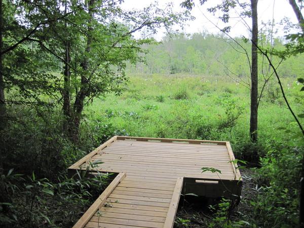 West Branch Nature Preserve Observation Deck