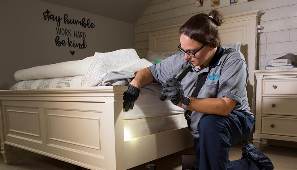 moyer bed bug control specialist inspecting home for bed bugs