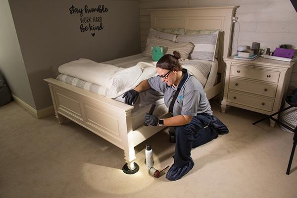 bed bug treatment in pennsylvania
