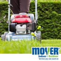 keeping your lawn mowed can prevent pests