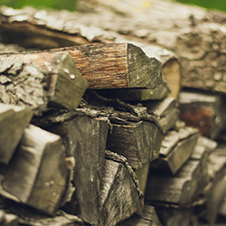 woodpile next to pennsylvania home
