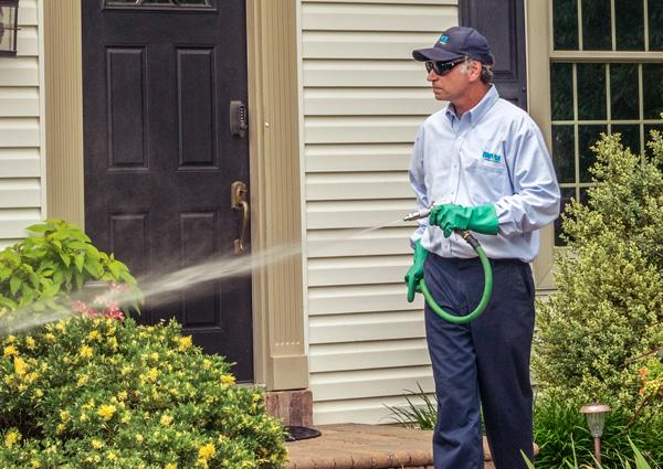 moyer service pro performing mosquito treatment in allentown