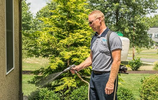 moyer professional performing mosquito control