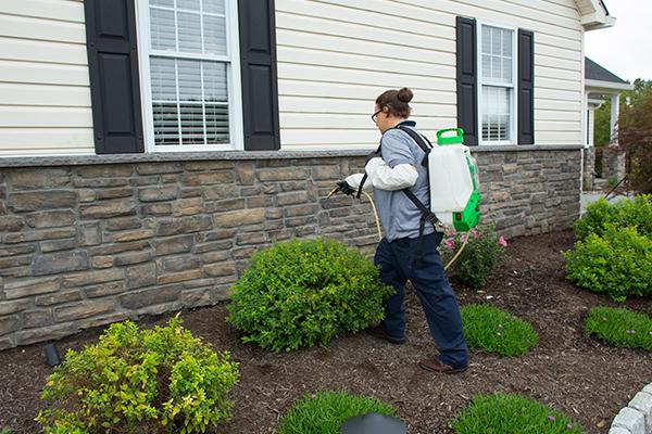 a pest control professional performing exterior pest control services