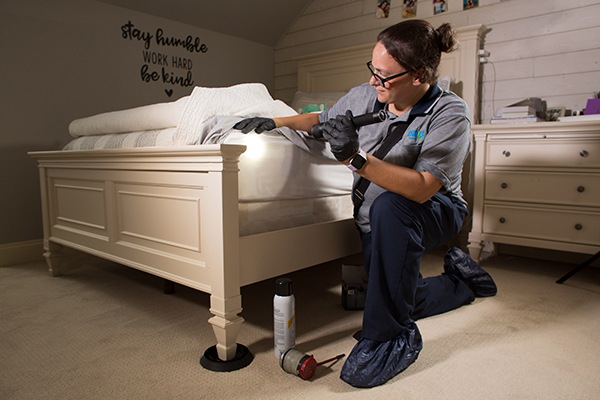 a bed bug expert looking under sheets in a home in lumberton new jersey