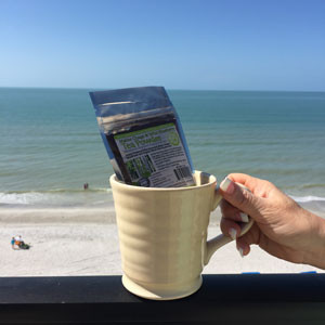 Antioxidant tea made from chaga and wild blueberries help against the summer sun