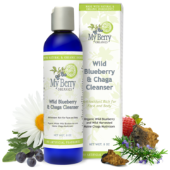 Wild Blueberry & Chaga Cleanser