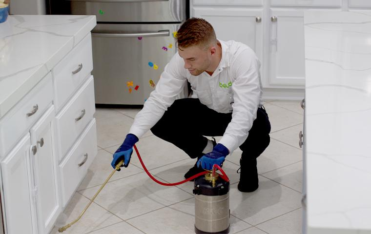technician spraying kitchen for cockroaches