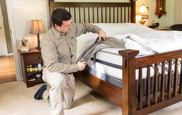 a pest technician inspecting a mattress for bed bugs in a home in austin texas
