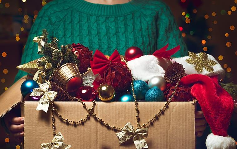 a box of holisday decorations infested with pests inside of a austin texas home