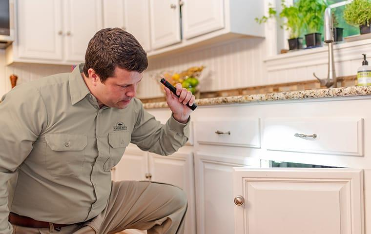 a pest technician inspecting a kitchen in austin texas