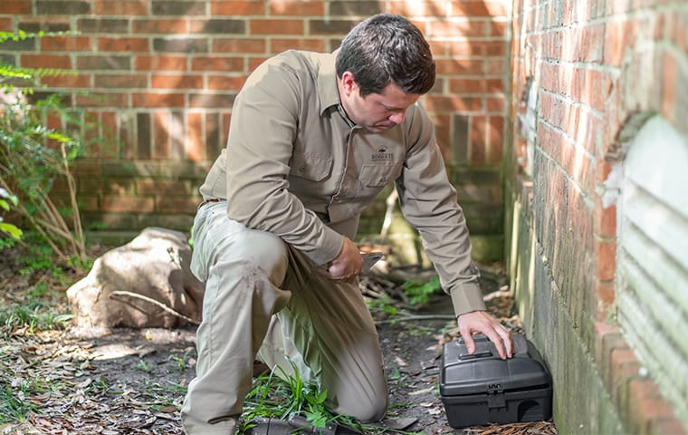 a pest technician servicing a rodent trap outside of a home in georgetown texas