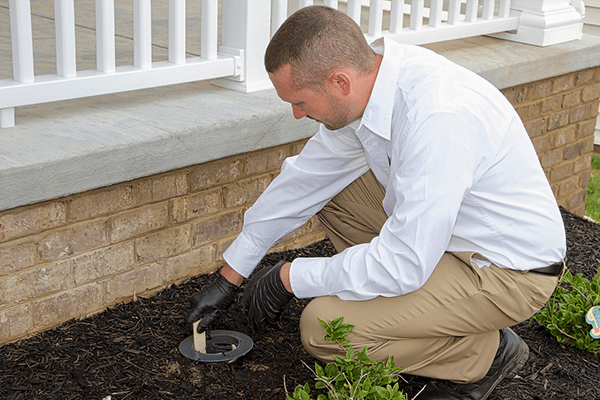 a pest technician checking a termite baiting station outside of a roanoke va home