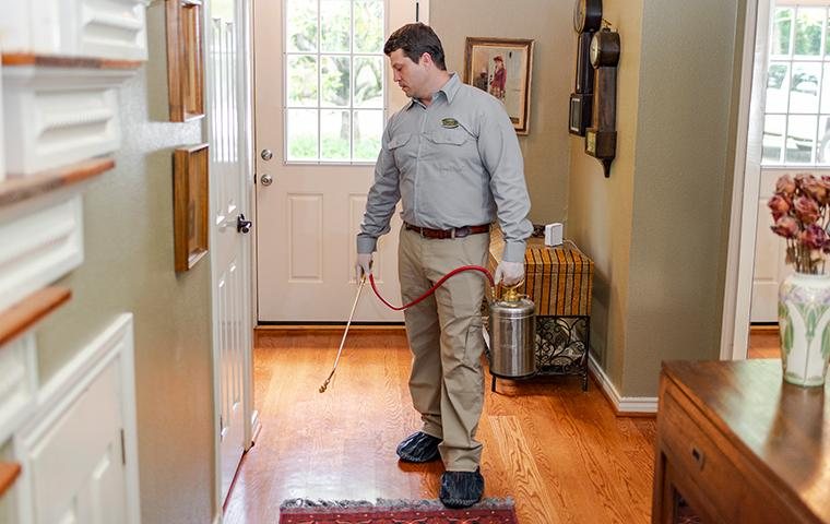 a pest technician treating for pests inside of a home in santa clarita california