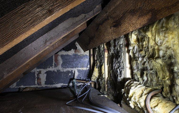 a small attic crawlspace