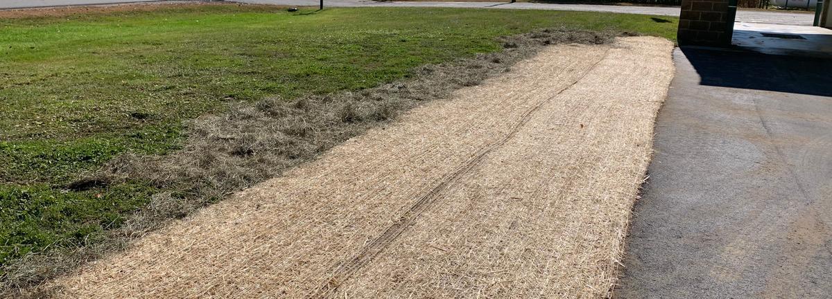 Grass with mulch