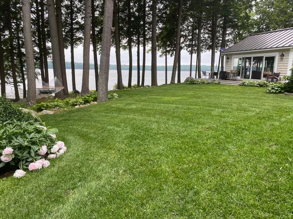 Rohm mowed lawn