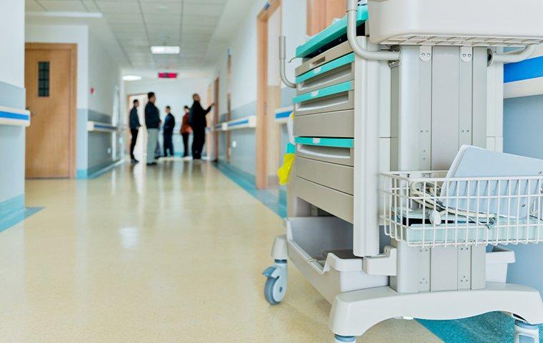 inside of a hospital hallway
