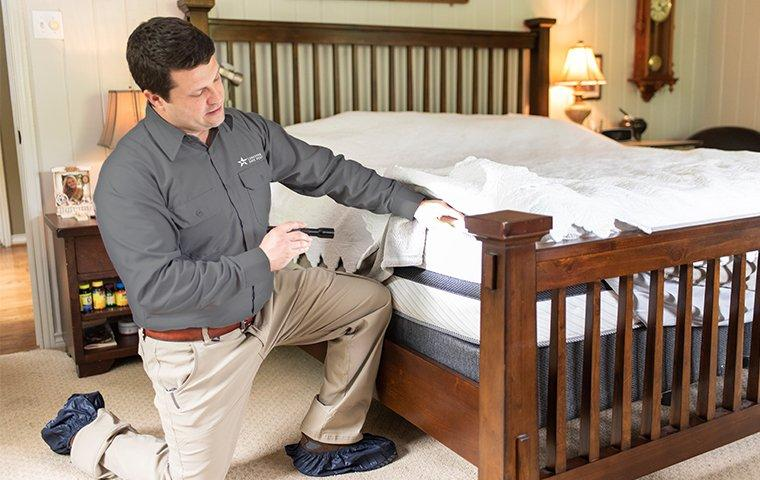 a pest control service technician inspecting a bed for bed bugs inside of a home