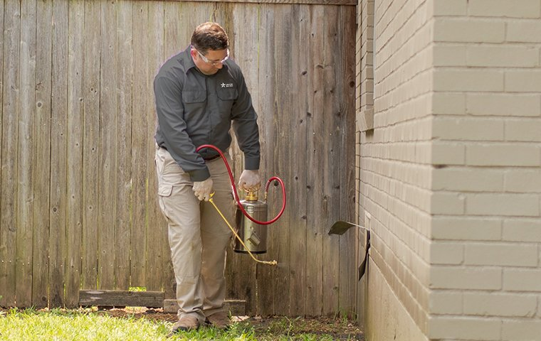a pest control service technician performing pest treatment services outside of a home