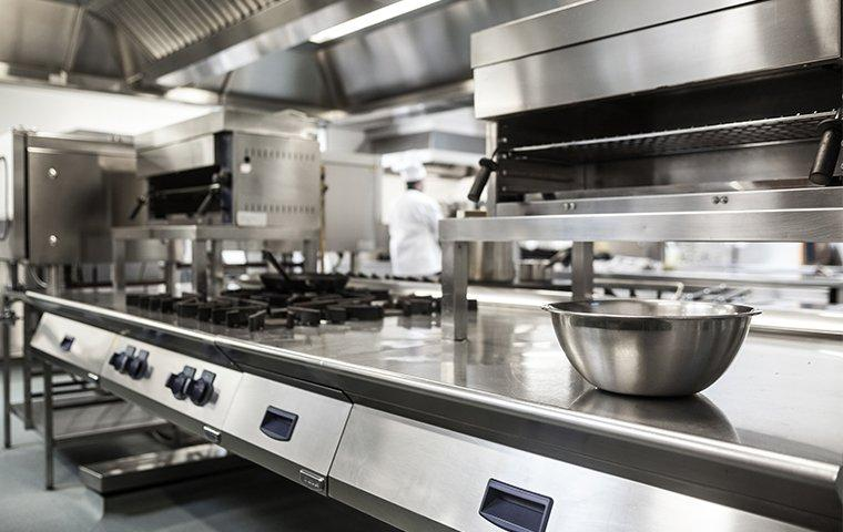 a pest free commercial kitchen