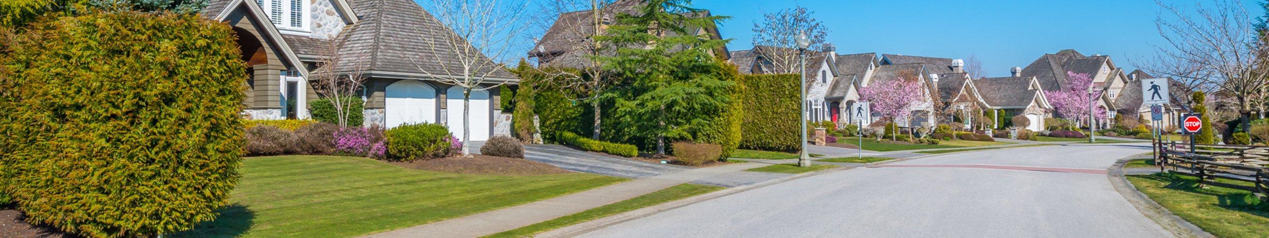 a suburban neighborhood street