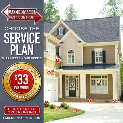 service plan map