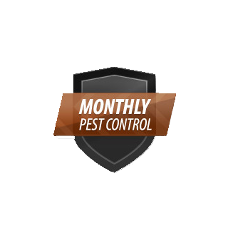 monthly pest control