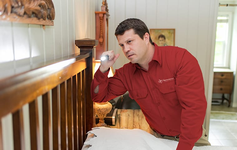 a technician inspects for pests in a frisco texas home