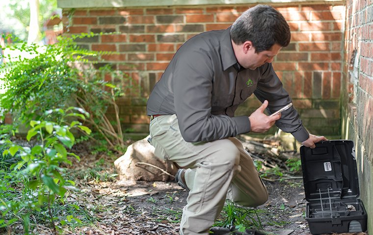 a rodent control specialist checking a trap outside a home in hendersonville north carolina