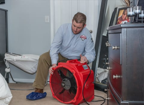 Preparing For A Bed Bug Heat Treatment