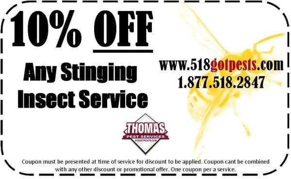 10% off stinging insect service