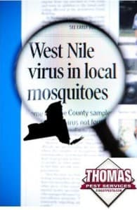 west nile virus in new york