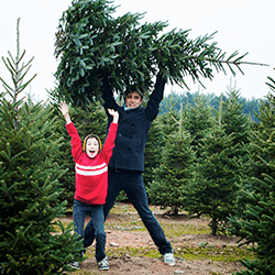 father and son picking out christmas tree