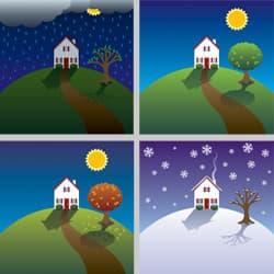 illustration of four seasons