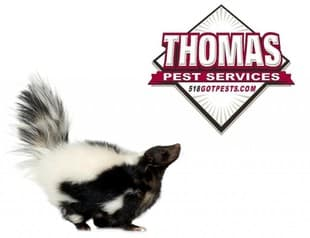 Clifton Park NY Animal Removal
