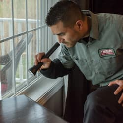 residential pest inspection