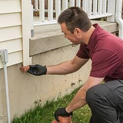 technician pest-proofing new york home