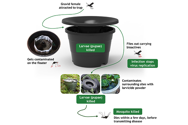 in2care mosquito trap components