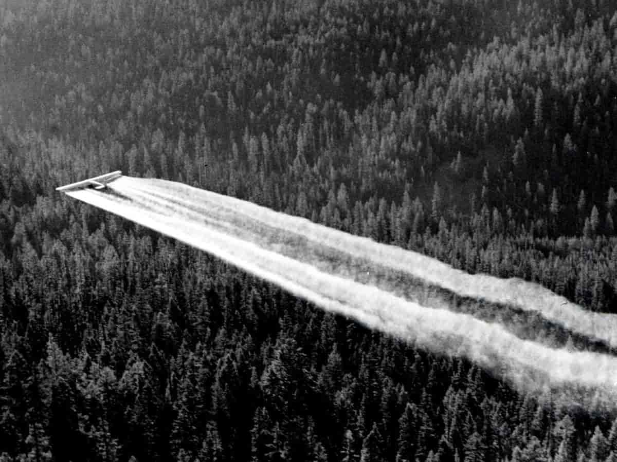 Airplane dropping DDT on crops