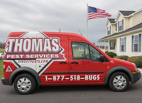 thomas pest services transit