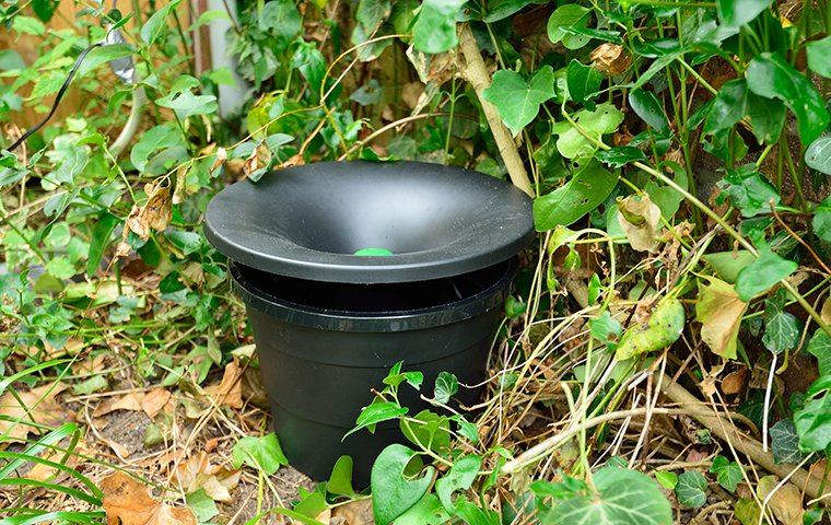 an in2care mosquito treatment system outside home