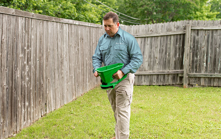 a pest expert treating yard for pests