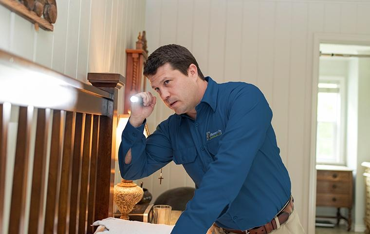 a pest technician inspecting a bed frame for bed bugs in a home in elizabeth city north carolina