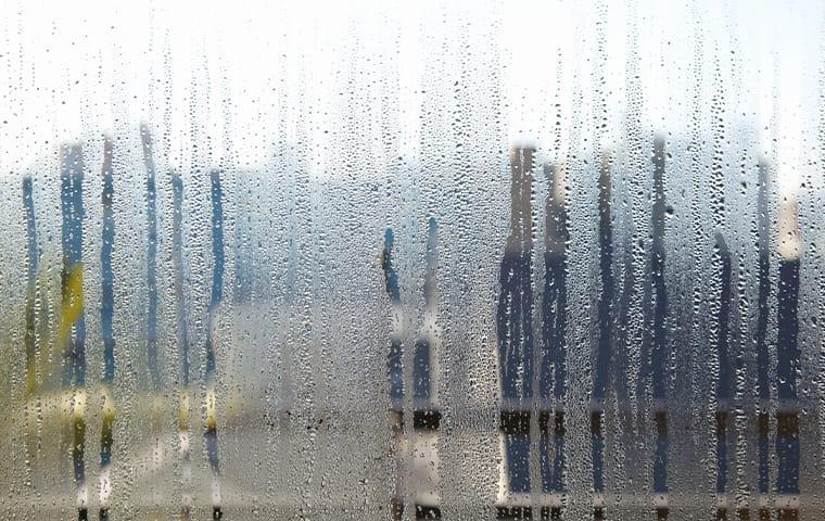 condensation on a window in a chesepeake virginia home