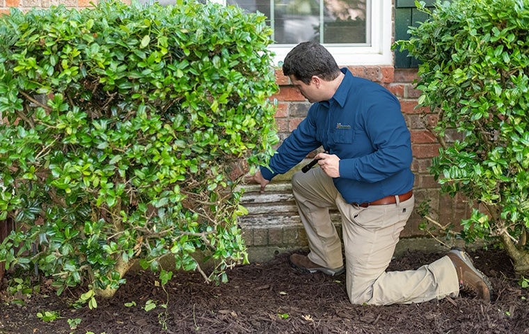a pest technician inspecting the exterior of a home in chesapeake virginia