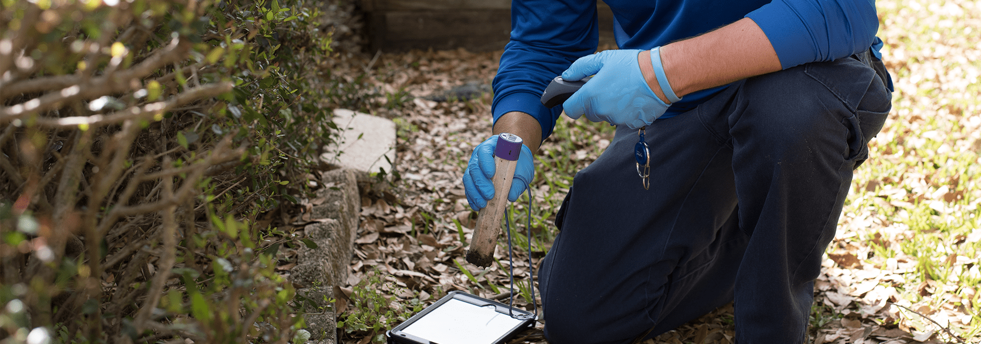 a technician inspecting a termite baiting trap outside of a jacksonville florida home
